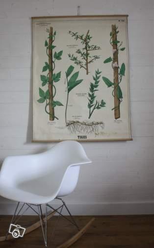 Ancienne planche scolaire cole 1920 d coration morbihan - Carte murale scolaire ancienne ...