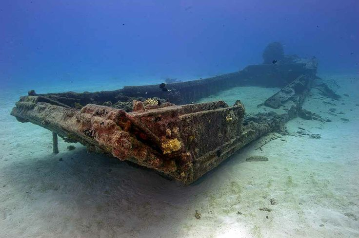 Daihatsu | The Battle of Saipan