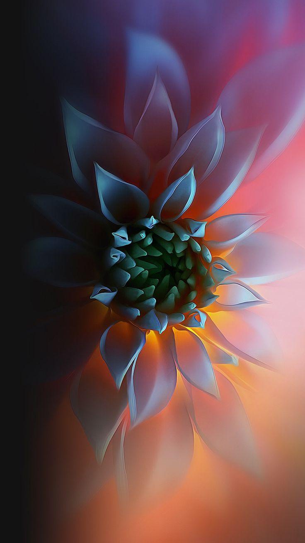 Flower Flower Fraktal Sanati Soyut Cicek Resimleri Iphone Arkaplanlari