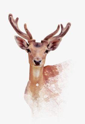 الغزال Deer Moose Art Painting
