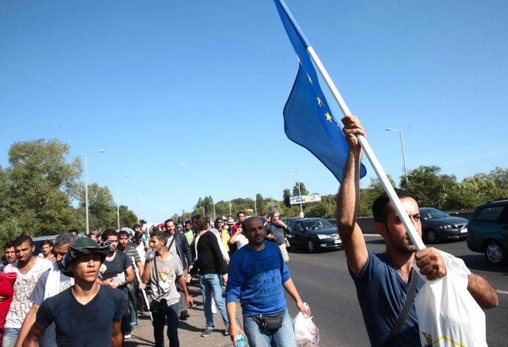 Mit Fahne, Wasserflasche und Plastiktüte auf einem rund 200 Kilometer langen Fußmarsch entlang der Hauptstraßen von Budapest gen Österreich: Tausende von Flüchtlingen