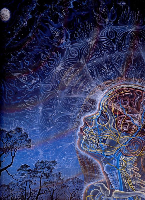 Wonder - Zena Gazing at the Moon, 1996, acrylic on paper 16 x 20 in. Alex Grey