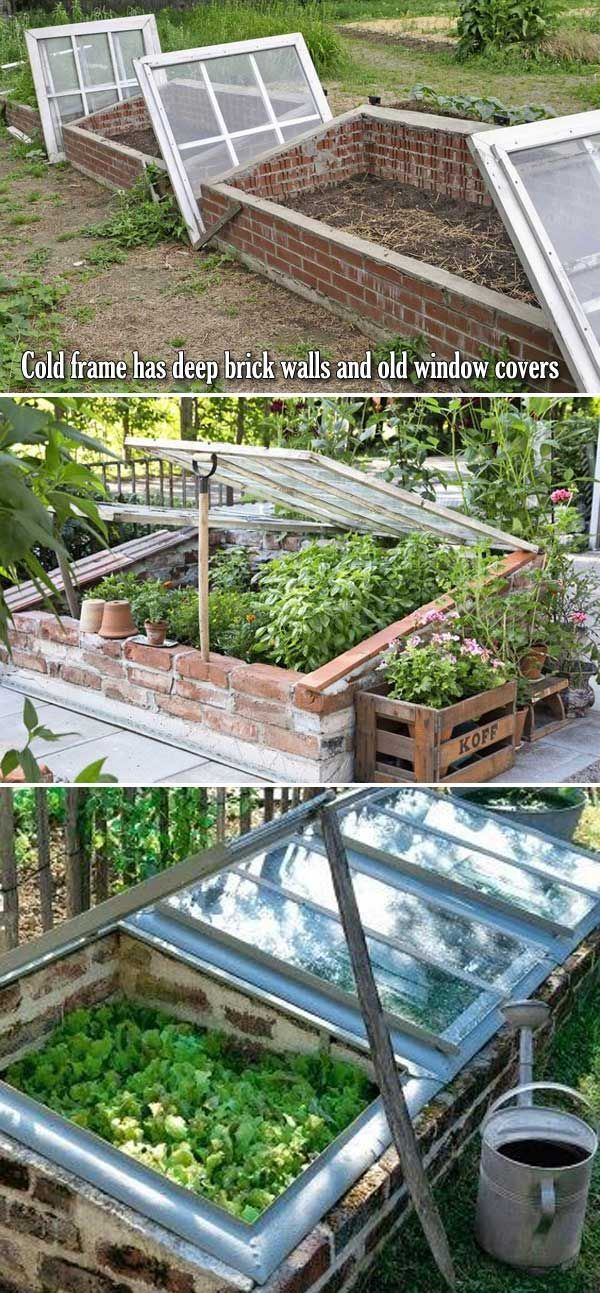 Vegetable Gardening Tips At Your Backyard Cold Frame Brick