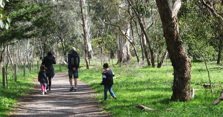 Great hikes around South Australia for kids aged 7 to 12, explore rock formations, big trees, caves, creeks, waterfalls and see wildlife.