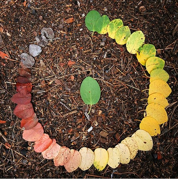 leaf ring. find a rainbow of leaves