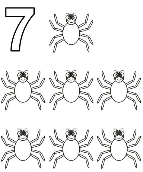Counting Using Spiders