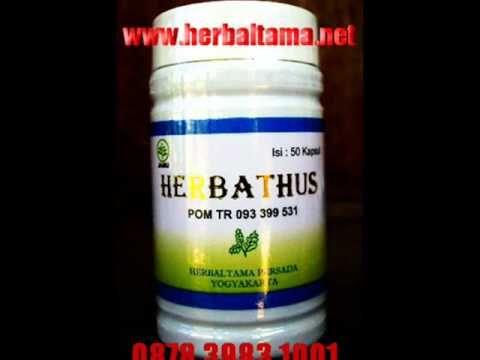 0878 3983 1001 Cara pengobatan diabetes tipe 2