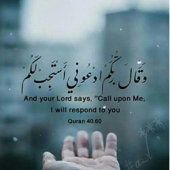 15 Best Islamic Quotes And Ayat Images On Pinterest