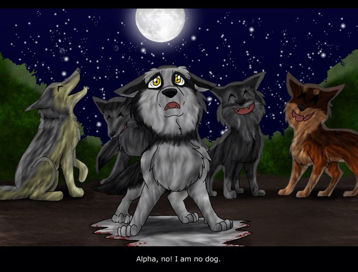 Red Moon Rising Survvior Dogs