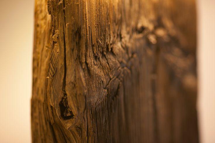 #oldwood, #lamp, #nature