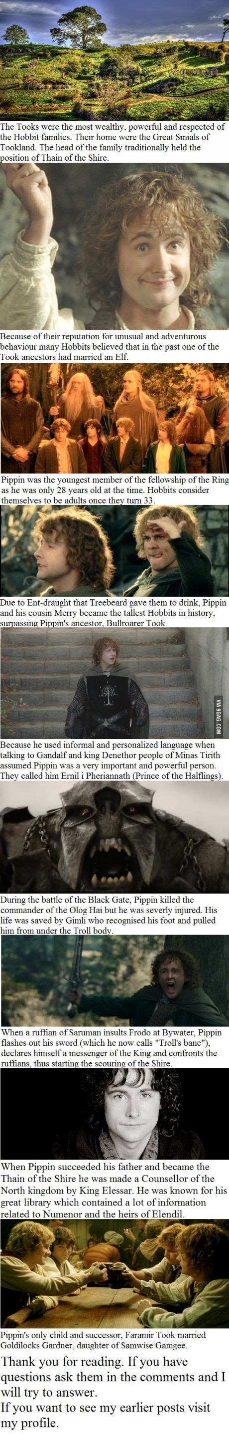 10 Peregrin Took facts you may not have known
