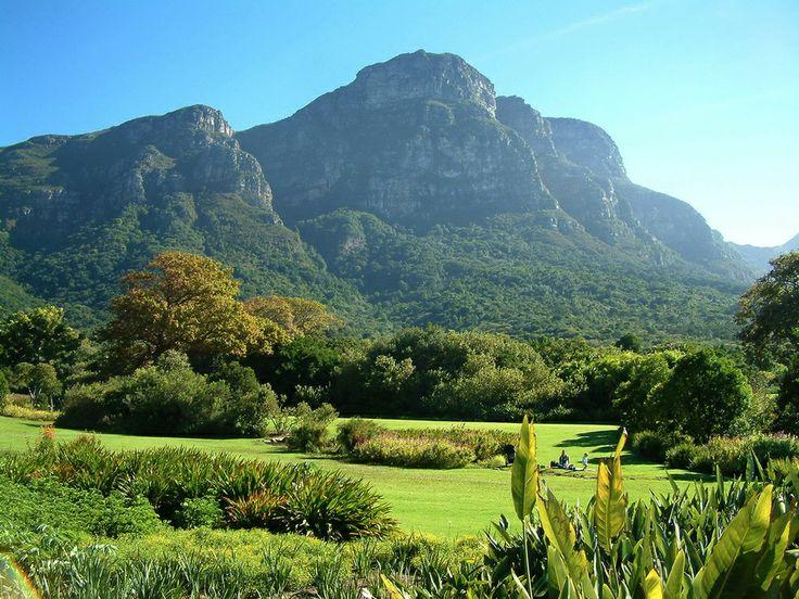 Kirstenbosch gardens, Cape Town, South Africa.