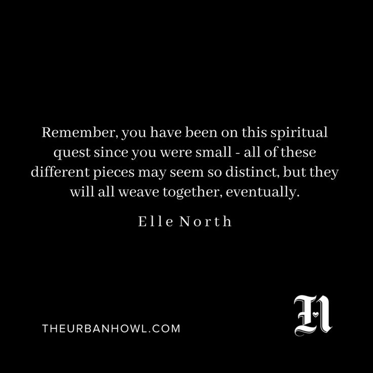 Elle North - The Urban Howl