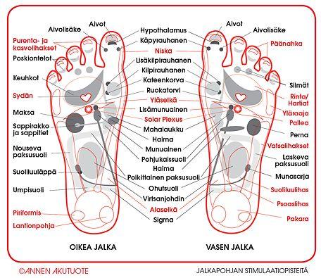 Jalkapohjan stimulaatiopisteet