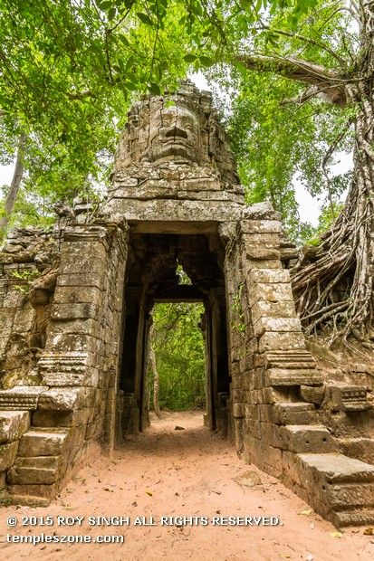 While Ta Prohm monuments lay forgotten and neglected by men, the Cambodian jungle wasted no time in devouring it. Silk-cotton and strangler fig trees took root in the loosened stones of the temple, which was built entirely without mortar. It's still a beautiful until today flocked by millions of visitors yearly.