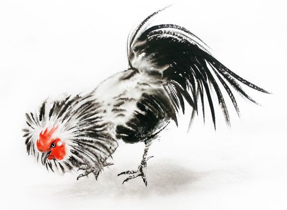 Петушок - Петушок Год - 2017 Китайский Новый Год петуха – Акварель – тушь - петух китайской живописи