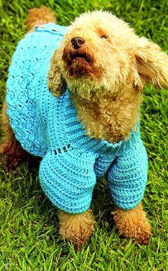 MATERIALES: 150 gramos de fibra acrílica semigorda en color turquesa; Aguja de crochet nº 00 y nº 3 1/2; 6 botones metálicos; Aguja par...