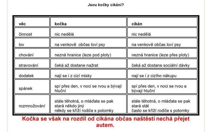 Furt je lepší mít doma kočku než-li cikána | Vtipné obrázky - obrázky.vysmátej.cz