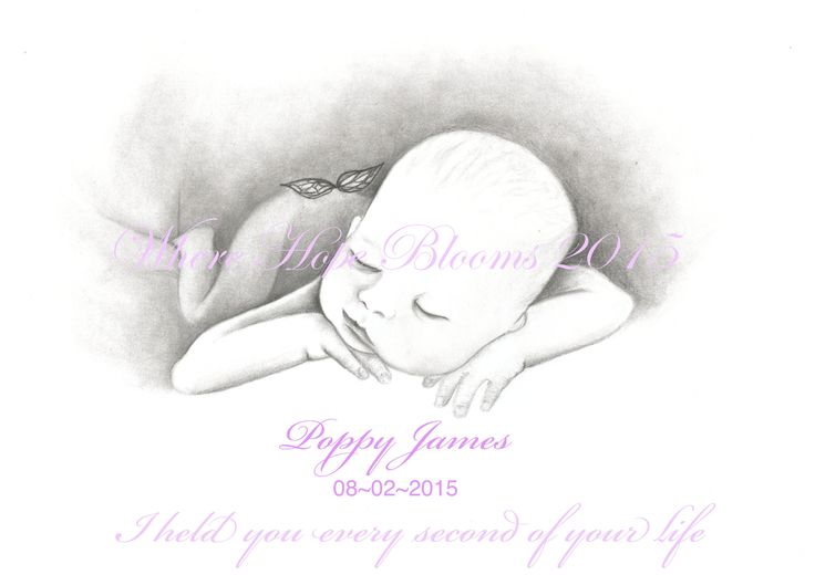 Where Hope Blooms, Butterfly Baby Series for miscarriage and babyloss.  https://www.facebook.com/media/set/?set=a.850227985044056.1073741838.804550522945136&type=3