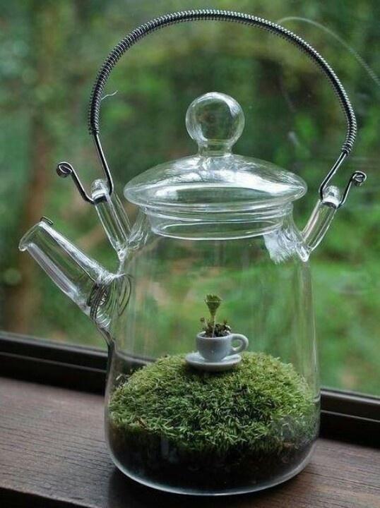 glass teapot terrarium
