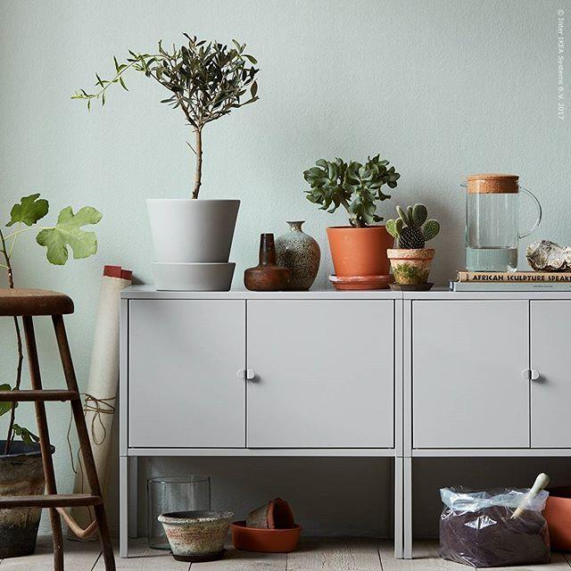 Vårplantera med #LIXHULT metallskåp som arbetsbord, perfekt för den urbana hemmaodlarens förvaring av allt från jord till krukor! Hos oss låter vi Ficus carica trängas med Olea europaea och Cactaceae. Vad planterar du i vår? Nyhet! LIXHULT skåp 299 kr.