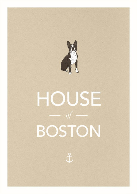 We are The House of Boston... Terriers that is
