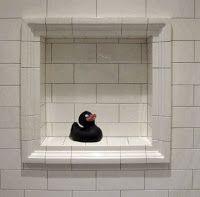 86 Best Bathroom Renovation Images On Pinterest Bathroom