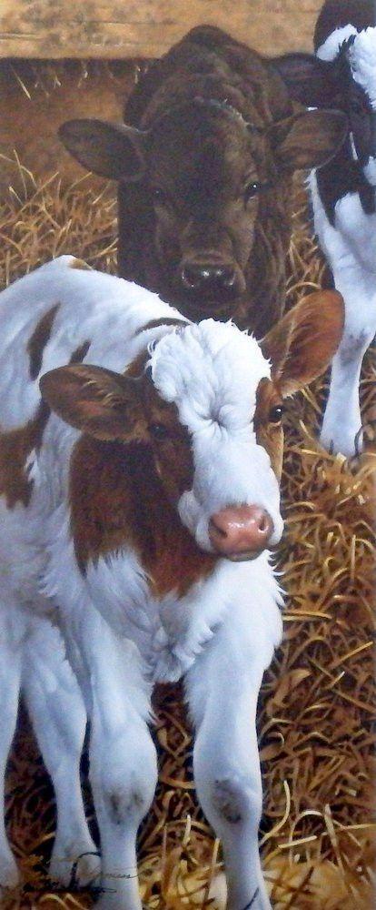 Farm Animals Are Friends NOT Food! Jerry Gadamus Feeding Time