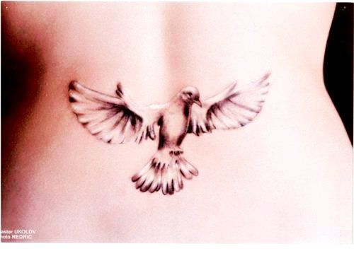 lavender dove tattoo | Quote Tattoos discovered : Cute ...