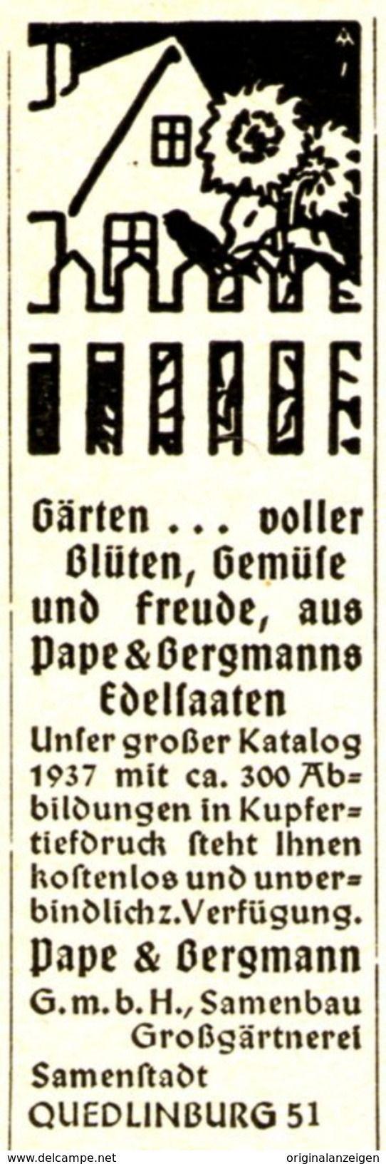 Elegant Werbung Original Werbung Anzeige EDELSAATEN PAPE u BERGMANN QUEDLINBURG