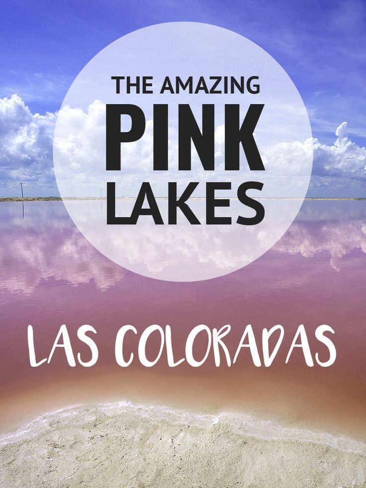 Amazing pink lakes of Las Coloradas in Mexico