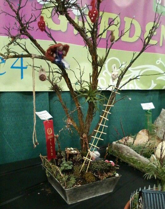Marianne Nelsonu0027s Fairy Garden Won 2nd Place @ Boise Flower U0026 Garden Show  ...
