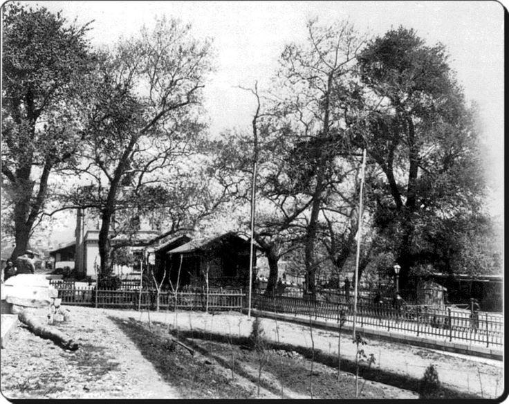 Kadıköy / Haydarpaşa - 1872