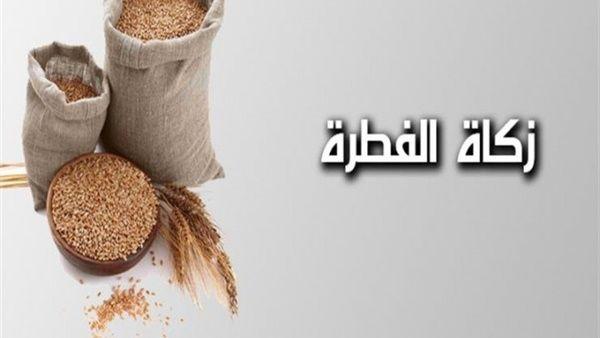 تعرف على مقدار زكاة الفطر في اليمن وحكم تسليمها للدولة المهرة بوست Napkin Rings Straw Bag Decor