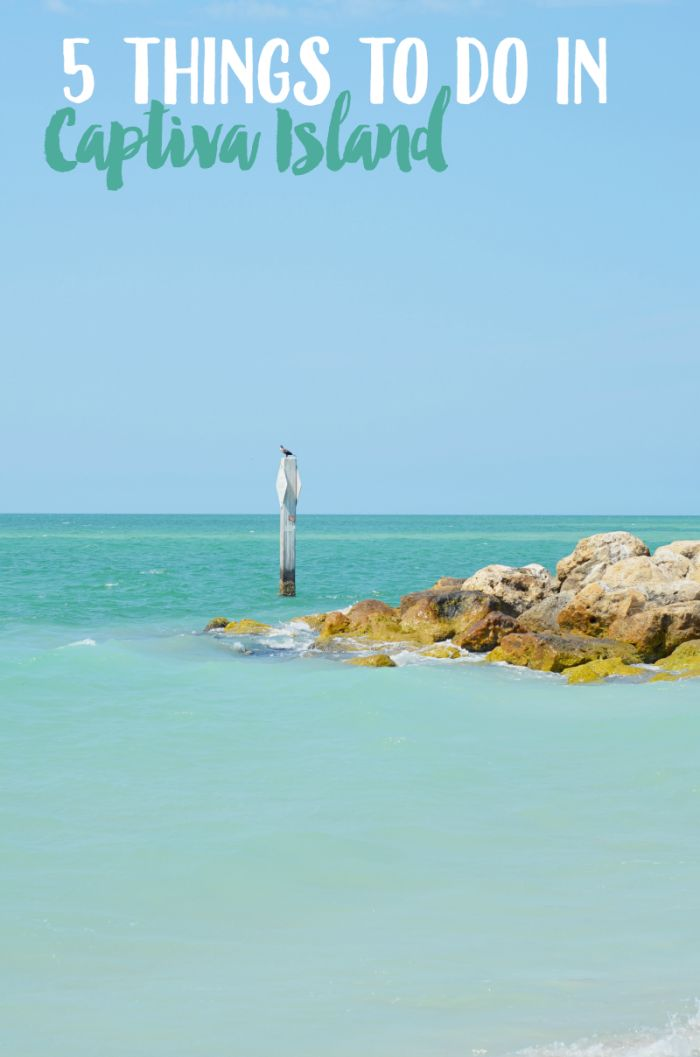 Plan a trip to Captiva Island and stay at South Seas Island Resort! Enjoy these Florida family activities in this summer hot spot!