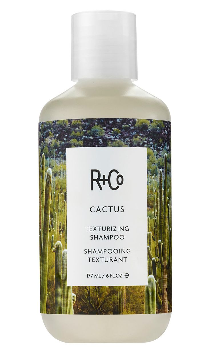 Why you NEED to try R+Co's Cactus Texturizing Shampoo if you live for cool girl messy waves.