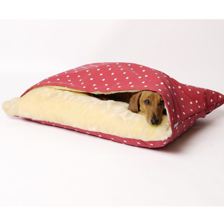 The Charley Chau Snuggle Dog Bed in Dotty Raspberry is designed for dogs that love to sleep and snuggle under a blanket or duvet. This fantastic designer pet bed has a cosy faux-fur fleece lined pocket for your dog to climb into so they can be snug as a bug, even when you're not there to tuck them in! Features and Benefits: Cosy faux fur pocket for your pet. Deep filled mattress base. Available in variety of designs and sizes. Machine washable. Snuggle bed cover: 100%...