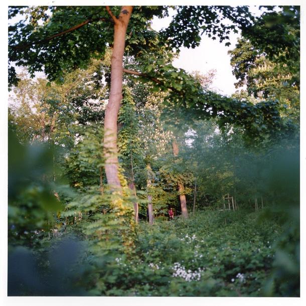 Bois de Boulogne by Masashi Nakata