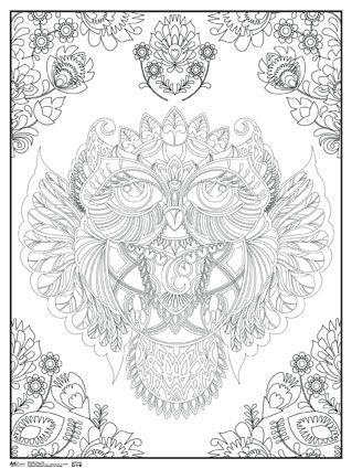 Decorative Owl - Coloring Poster - Trends International | Coloring ...