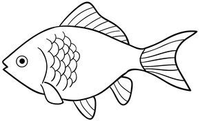 45+ Ikan koki kartun info