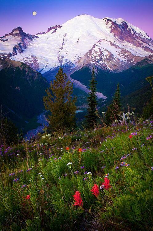Antes del amanecer en el Monte Rainier Washington.