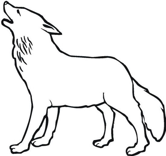 Great Powerful Wolves