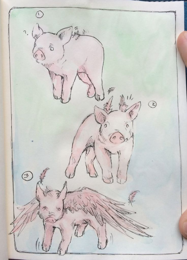Flying pigs by Candy Mountain Climber