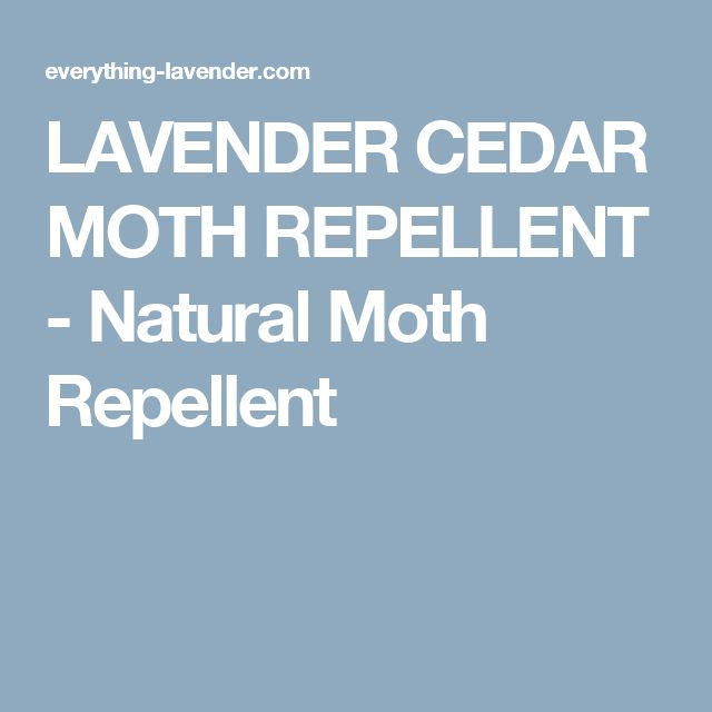 17 Best Ideas About Moth Repellent On Pinterest Natural