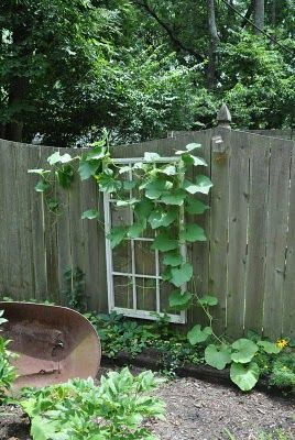 Upcycle an old window frame to a garden trellis: Trash Pickin' Treasures: Windows, Banisters, and Other Stuff