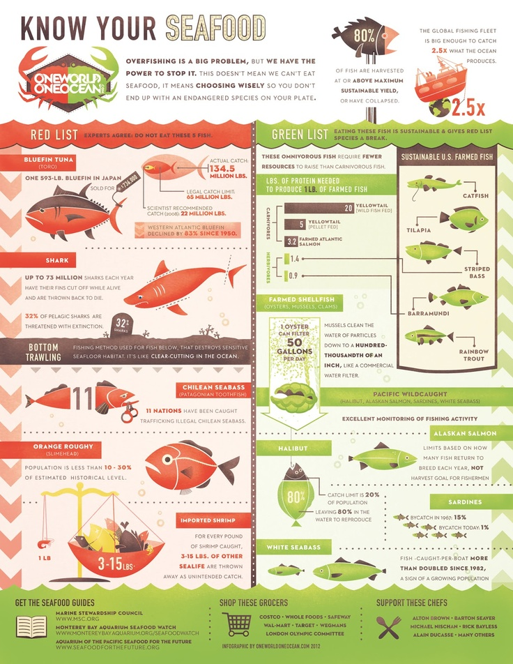 Know your seafood #INFOGRAPHIC