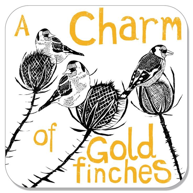 charm of goldfinches coaster Perkins and Morley designs