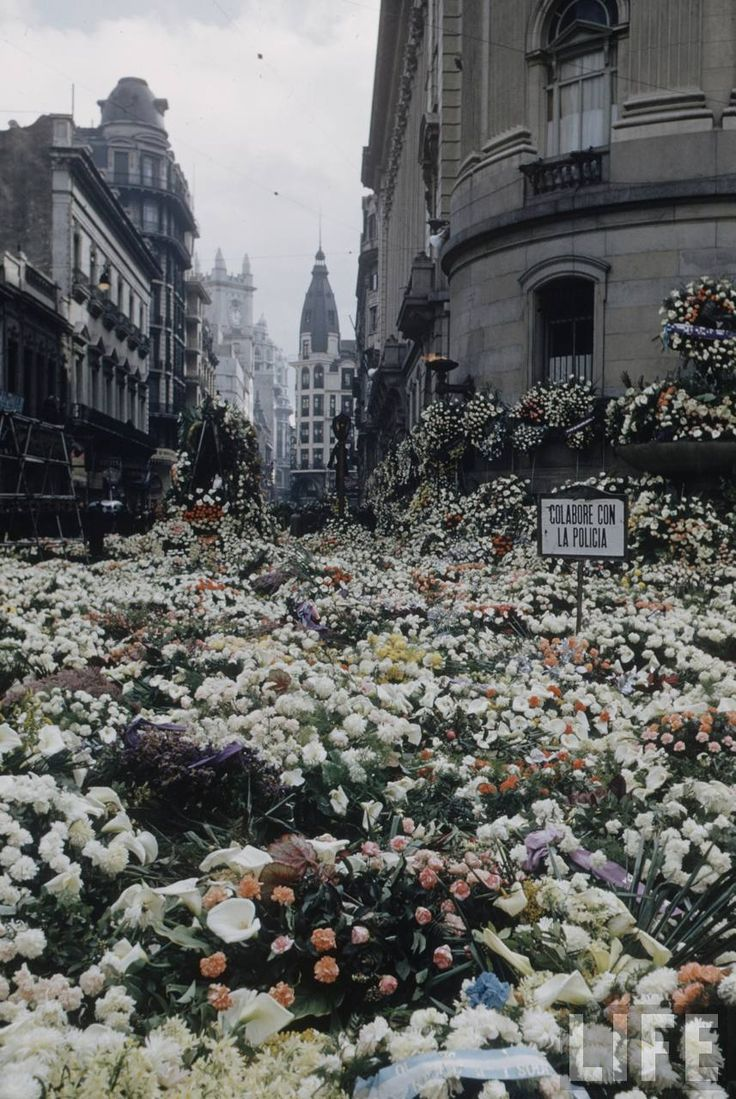 Evita´s death. Argentina and neighoring countries end all its flower stocks. Life Cover.