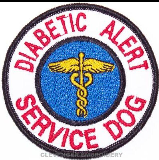Type  Diabetes In Dogs
