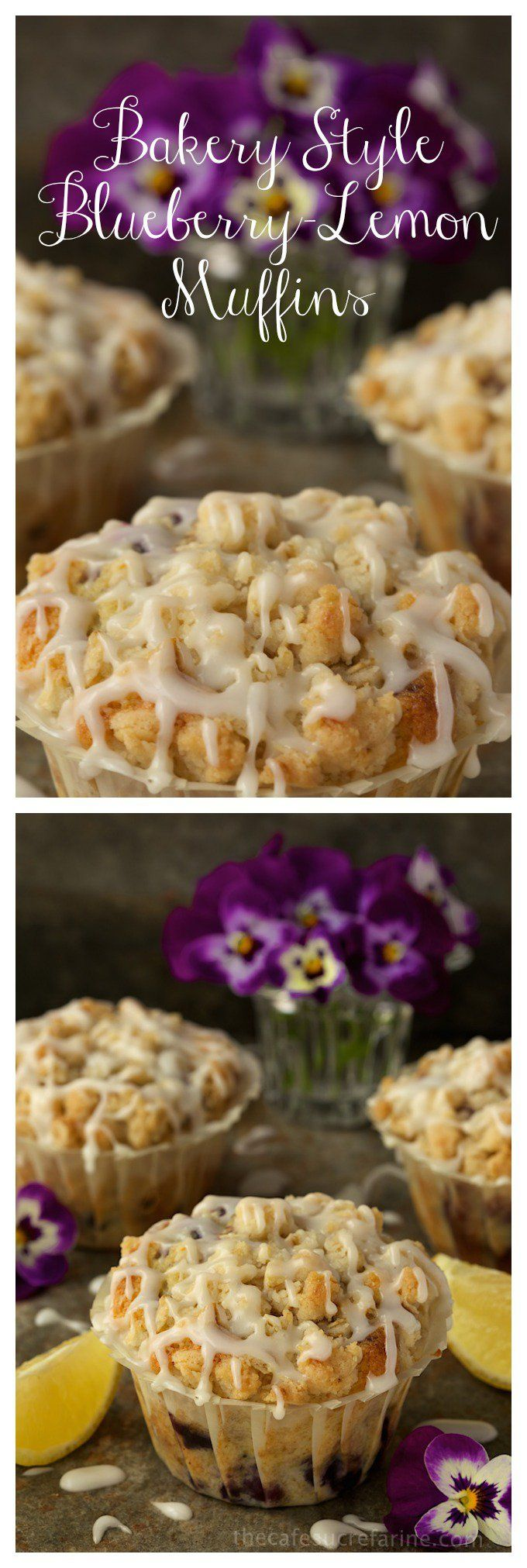 Bakery Style Blueberry-Lemon Muffins - the kind of muffins you find at a gourmet bakery shop! thecafesucrefarine.com